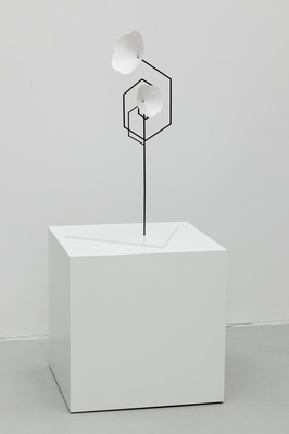 Untitled (Flower 1), 2012