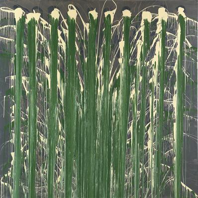 Paint Net Elipse Canvas