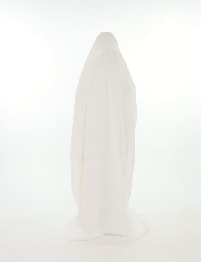 Image result for ian mckeever virgin mary