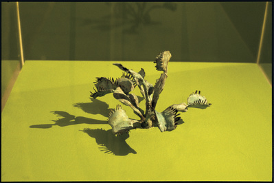 Venus Fly Trap, 2000 By Graham Fagen