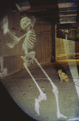 Juggling Skeleton at Coco Amardeil, Hackney Wick, London, 20...