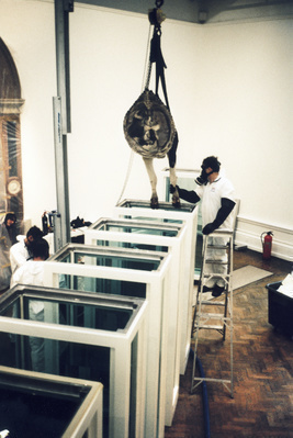 Installation, Damien Hirst's 'Some Comfort From The Acceptan...