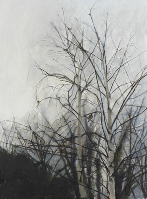 Winter Trees, 2005