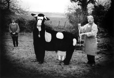 Mad About the Cow l, 1999