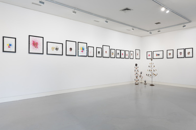Installation view, The Mighty Scheme, 2016