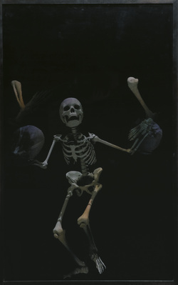 Juggling Skeleton Lenticular (white on black), 2006 By Abigail Lane
