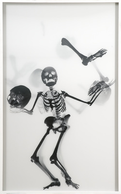 Juggling Skeleton Lenticular (black on white), 2006 By Abigail Lane