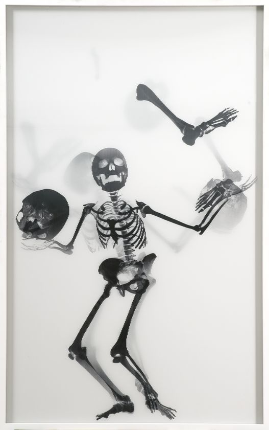 Juggling Skeleton Lenticular (black on white), 2006