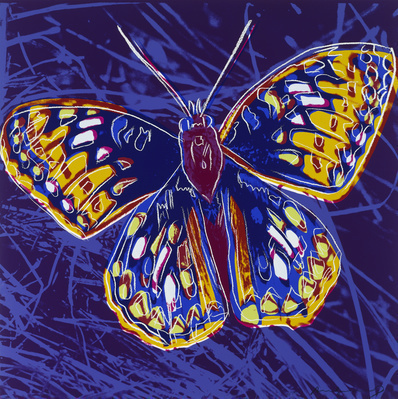 Endangered Species: San Francisco Silverspot, 1983