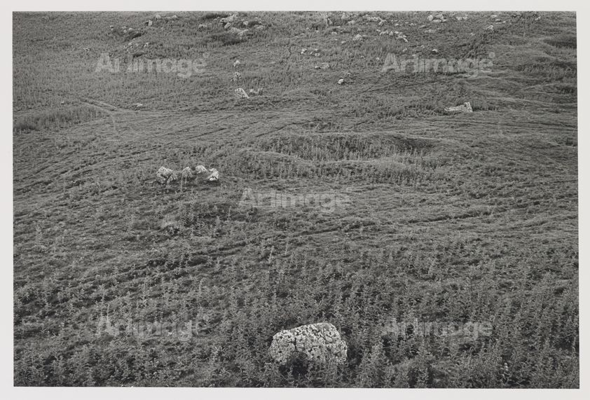 Enlarged version of Stones and Circle, Carsington Pastures, 1979