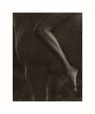 Horse and Leg, England, 1992