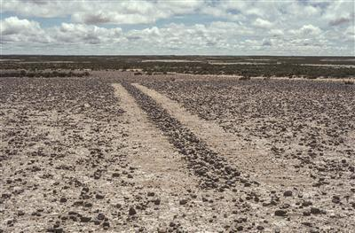 A Line in Bolivia, 1981 By Richard Long