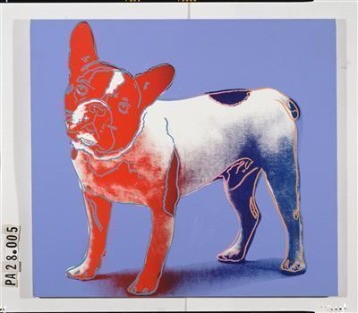 Yves Saint Laurent's French Bulldog, 1986