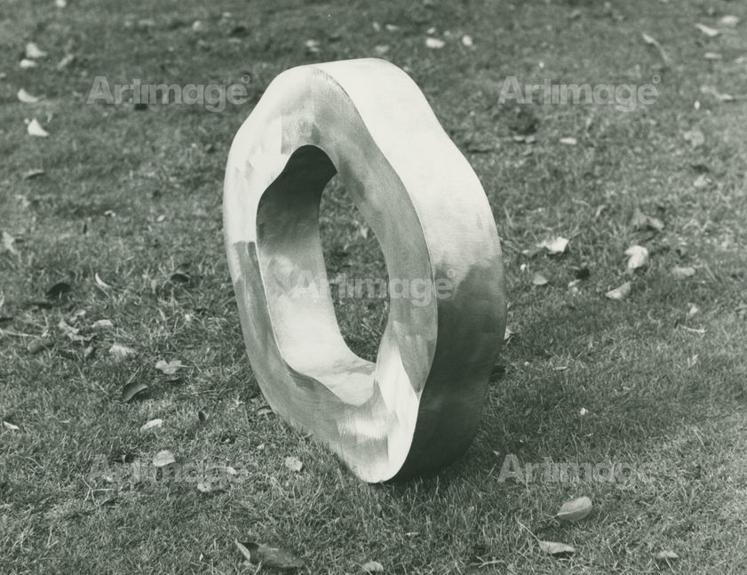 Enlarged version of Ring, 1972